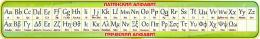 Купить Стенд Таблица с Латинским и Греческим алфавитом в золотисто-зеленых тонах 1950*300мм в Беларуси от 67.00 BYN
