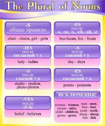 Купить Стенд The Plural of Nouns в кабинет английского языка в фиолетово-жёлтых тонах 500*600 мм в Беларуси от 33.00 BYN
