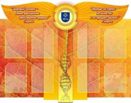Купить Стенд в кабинет Биологии с объемными элементами 2 1350*1060мм в Беларуси от 193.00 BYN
