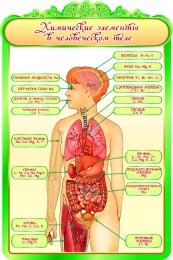 Купить Стенд Химические элементы в человеческом теле для кабинета Биологии 600*900мм в Беларуси от 62.00 BYN
