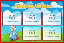 Купить Стенд Зеленая аптека для экологической тропы 750*500 мм в Беларуси от 50.00 BYN