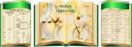Купить Стендовая  композиция Фізіка вакол нас на белорусском языке в виде раскрытой книги в золотисто-зеленых тонах  2800*1000мм в Беларуси от 339.50 BYN