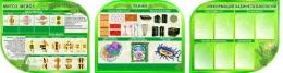 Купить Стендовая композиция в кабинет биологии Строение клетки ткани растений 3300*850 мм в Беларуси от 326.50 BYN