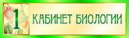 Купить Табличка  для кабинета Биологии 330*100 мм в Беларуси от 5.00 BYN