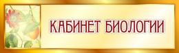 Купить Табличка Кабинет Биологии в золотистых тонах 330*100 мм в Беларуси от 5.00 BYN