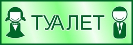 Купить Табличка Туалет в зелёных тонах 300*100 мм в Беларуси от 3.00 BYN