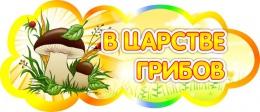 Купить Табличка В царстве грибов 350*150 мм в Беларуси от 7.00 BYN