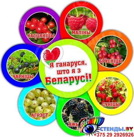 Фигурный стенд Я ганаруся, што я з Беларусi! ягоды 490*510мм