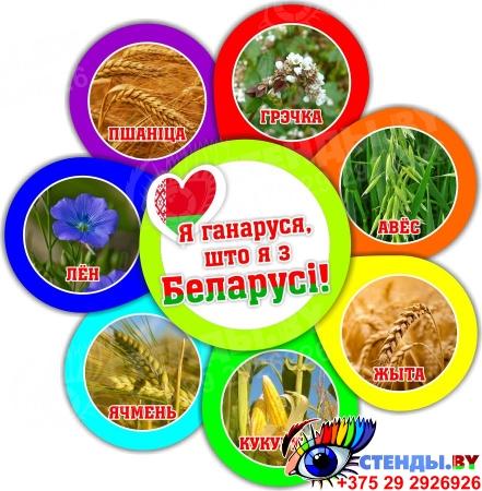 Фигурный стенд Я ганаруся, што я з Беларусi! растения 490*510мм