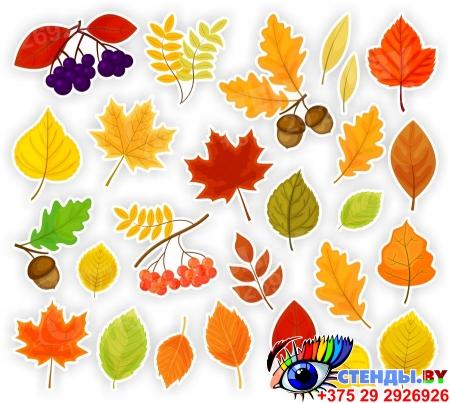 Комплект декоративных наклеек Осенние листочки 468*460мм