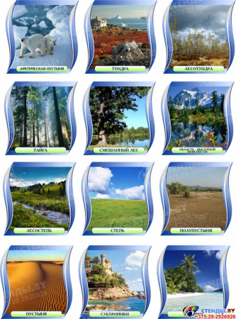 Комплект стендов Природные зоны для кабинета географии