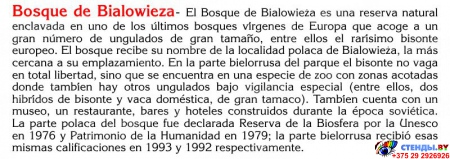 Стенд REPUBLICA DE BELARUS в кабинет испанского  языка в золотисто-зелёных тонах 600*750 мм Изображение #2