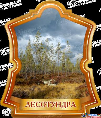 Комплект стендов Природные зоны Земли Изображение #5