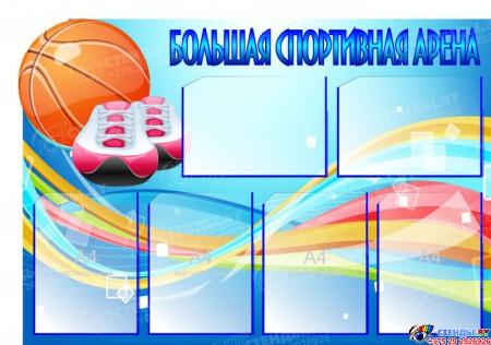 Стенд Большая спортивная арена с мячом 1000*700 мм
