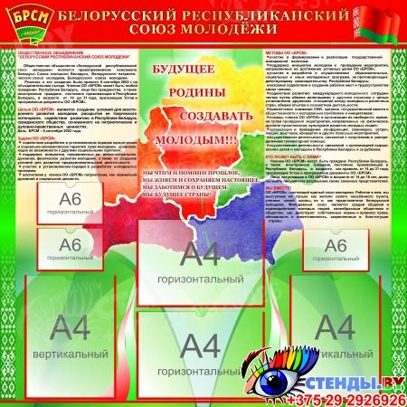 Стенд БРСМ на русском языке с картой 1000*1000 мм