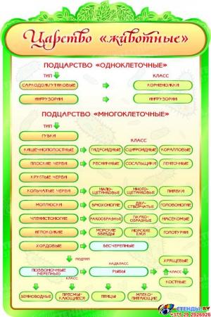 Стенд  Царство Животные в золотисто-зеленых тонах для кабинета биологии 600*900мм