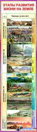 Стенд Этапы развития жизни на Земле 390*1380 мм