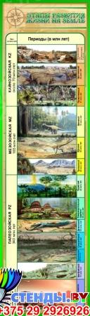 Стенд Этапы развития жизни на Земле в золотисто-зелёных тонах 400*1400 мм