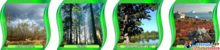 Комплект стендов Природные зоны Земли для кабинета географии в зеленых тонах с шапкой 300*300 мм Изображение #3