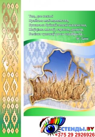 Стенд информационный Государственная символика Беларуси в зеленых тонах 1800*880мм Изображение #1