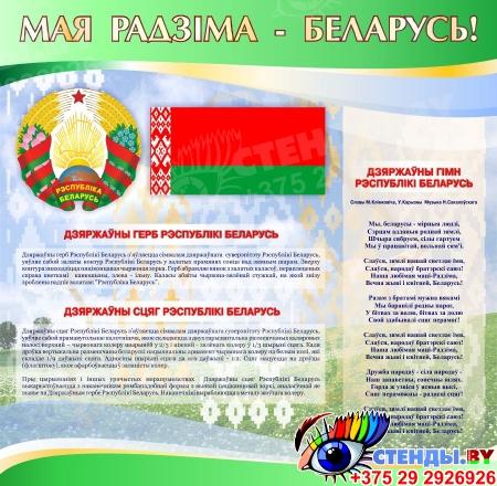Стенд информационный Государственная символика Беларуси в зеленых тонах 1800*880мм Изображение #2