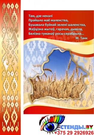 Стенд информационный Государственная символика Беларуси в золотисто-бордовых  тонах  1800*880мм Изображение #1
