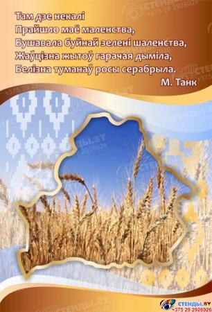 Стенд  Мая Радзiма-Беларусь 1550*770мм Изображение #4