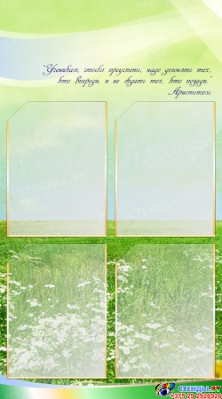 Стенд-композиция Классный уголок  1650*1000мм Изображение #4