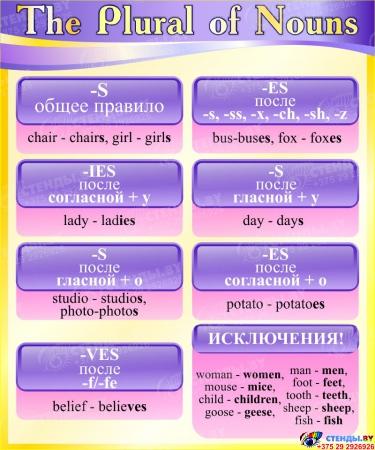 Стенд The Plural of Nouns в кабинет английского языка в фиолетово-жёлтых тонах 500*600 мм