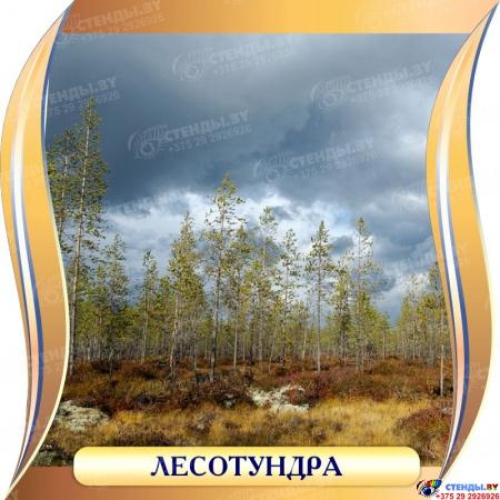 Комплект стендов Природные зоны для кабинета географии 300*300 мм Изображение #2