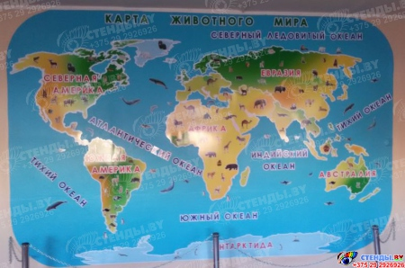 Композиция Карта животного мира  4080*2770 мм Изображение #1