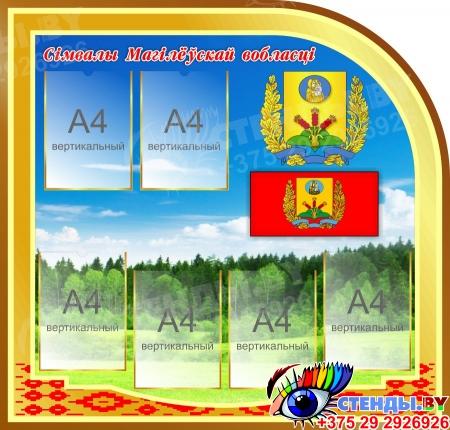Стендовая композиция Мая Радзiма - Беларусь с символикой страны и городов 3400*1500мм Изображение #3