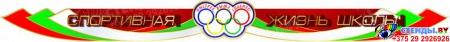 Стенд-композиция Спортивная жизнь школы  в бело-зелёно-красных тонах 2980*1370 мм Изображение #4
