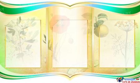 Композиция стендов Биология - наука о жизни в кабинет биологии в бирюзово-зеленых тонах 2900*850 мм Изображение #2