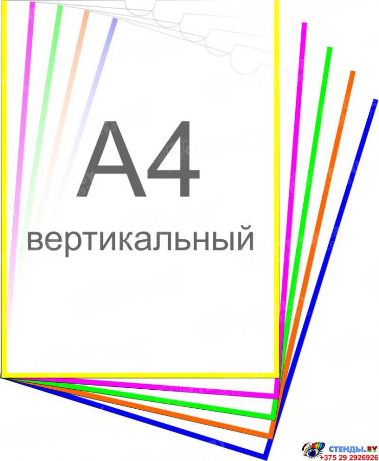 Купить Карман А4 для стенда самоклеящийся вертикальный 225х305 мм ? с доставкой по Беларуси | интернет-магазин Stendy.by